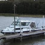 BAITFISH (Port Elgin)